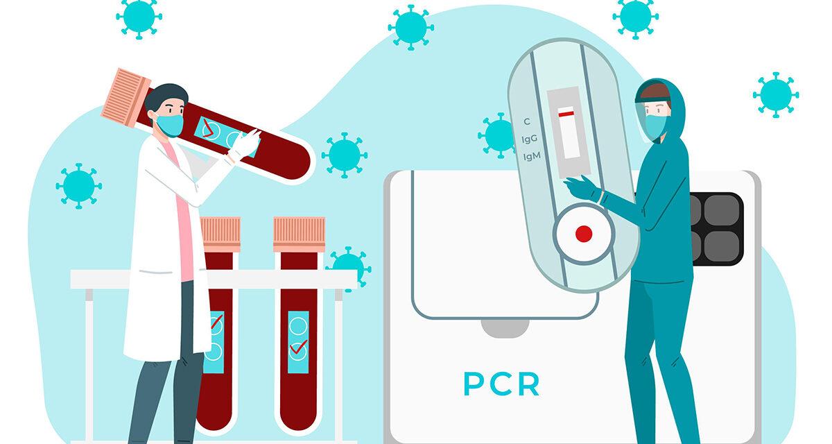 Wynik testu PCR